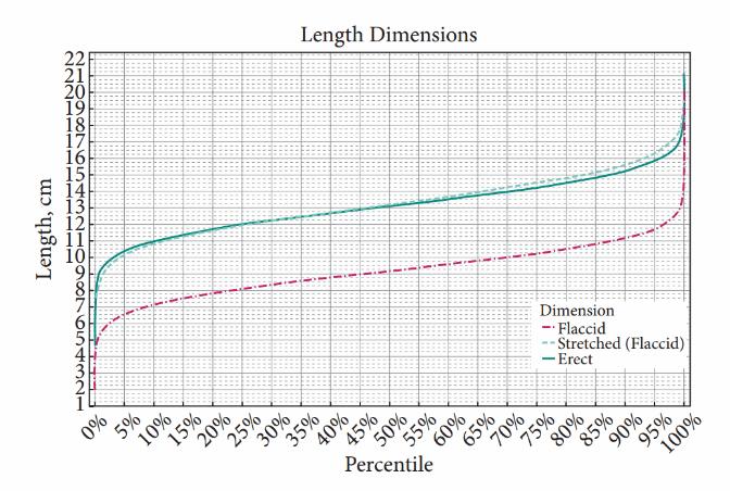 sn-penisdimensions-REV