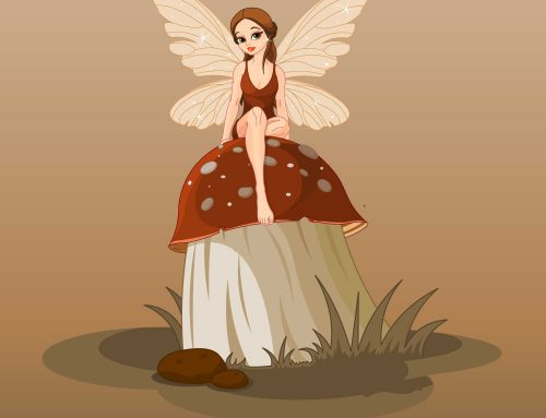 Introducing a new willy fairy